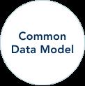 Common Data Model circle text image