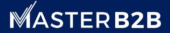Master B2B logo